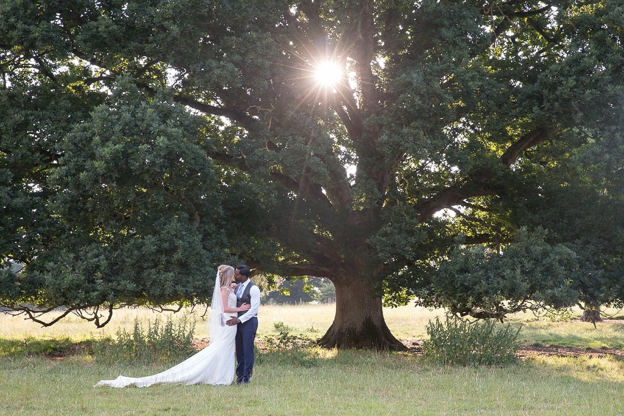 the sun shines through the tree at sunset as a couple hold hands at their Pynes house wedding